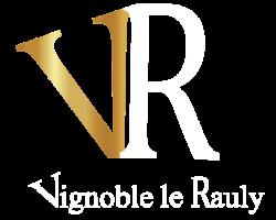 logo VR export